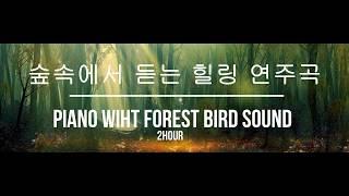 아늑한 숲속에 누워 듣는 피아노 연주곡