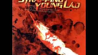 Strapping Young Lad - Bring On The Young