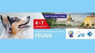 В Санкт-Петербурге состоялся 25-й Европейский ветеринарный Конгресс