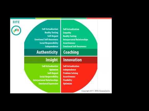 Emotional Intelligence and Leader Performance: Coaching - YouTube
