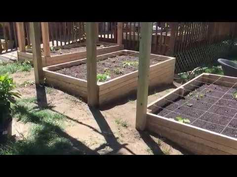 Easiest Raised Bed To Build | Download Lagu Mp3| Vidio Mp4