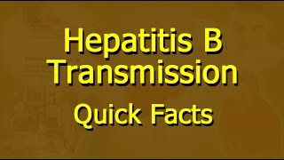 Hepatitis B - Transmission