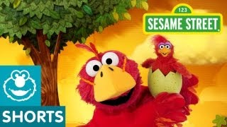 Sesame Street: What if Elmo was a Bird? (Elmo the Musical)