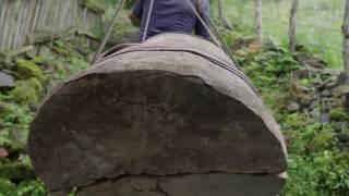 """""""ჯარა"""" – დოკუმენტური ფილმი ქართულ ტრადიციულ მეფუტკრეობაზე"""