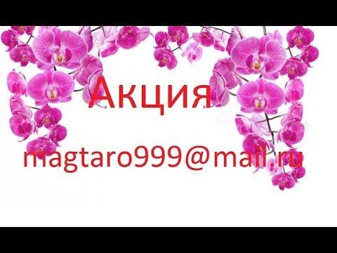 День астролога открытка