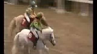 Shetland Pony Grand National 2006 Olympia