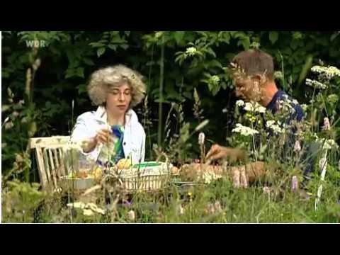 Gärten der Offenen Gartenpforte - Blumenthaler Hof