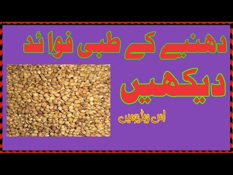 Dhaniya Kay Faidy |Health Benefits of Coriander in urdu