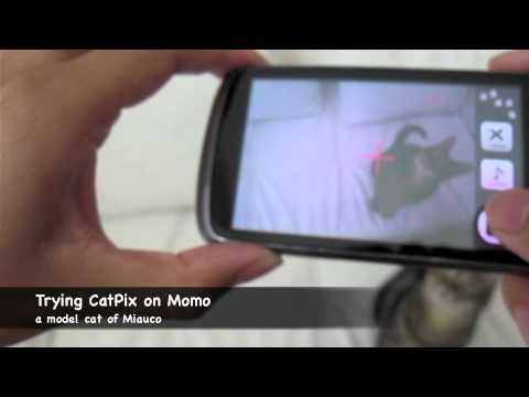 Video of CatPix