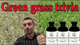 Free black seed oil - March trivia