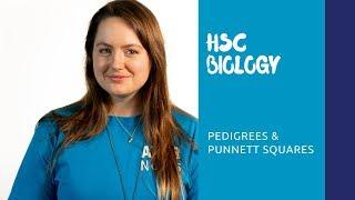 HSC Biology | Pedigrees & Punnett Squares