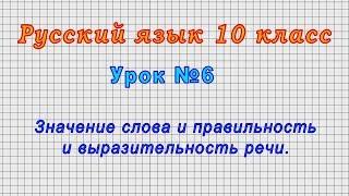 Русский язык 10 класс Урок 6