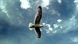 End Of The Sky By Lighthouse Family.wmv