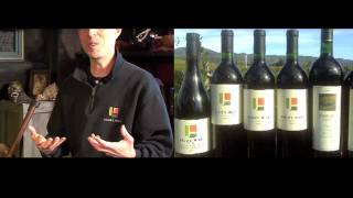 Judd's Hill : California Wine with Tony