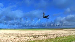 Documental 'Llerena, Capital de la Cetrería'