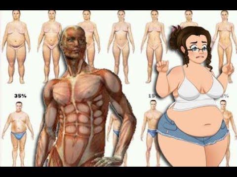 Die Diät für den großen Bauch