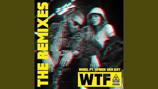 WTF (feat. Amber Van Day) (Damien N Drix Remix)