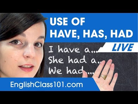 Have, Has, Had - English Grammar for Beginners