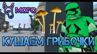 MOFO ПЕРЕЕЛ ГРИБОЧКОВ | VR ЧАТ | WoT | Far Cry 5