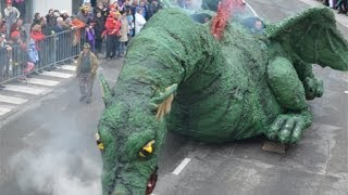 preview picture of video 'Karneval Cerknica 2014'