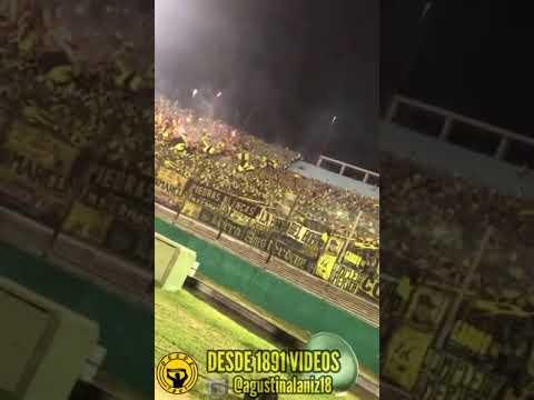 """""""HINCHADA DE PEÑAROL A NIVEL DE CANCHA 🤯"""" Barra: Barra Amsterdam • Club: Peñarol"""
