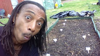 How To Start a Garden NOW - Emergency Gardening For Beginners - GROW YOUR OWN FOOD NOW!