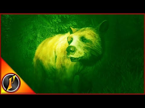 Night Vision Black Bear Hunting! | theHunter Call of the Wild