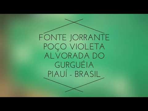 Poço Violeta - Alvorada  do Gurguéia-Piauí
