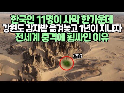 [유튜브] 한국인 11명이 사막 한가운데 강원도 감자밭 옮겨놓고 1년이 지나자 전세계 충격에 휩싸인 이유