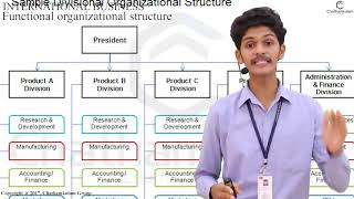 5 functional Organizational Structure