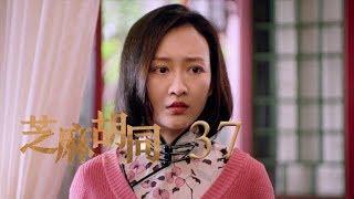 芝麻胡同 37 | Memories Of Peking 37(何冰、王鷗、劉蓓等主演)