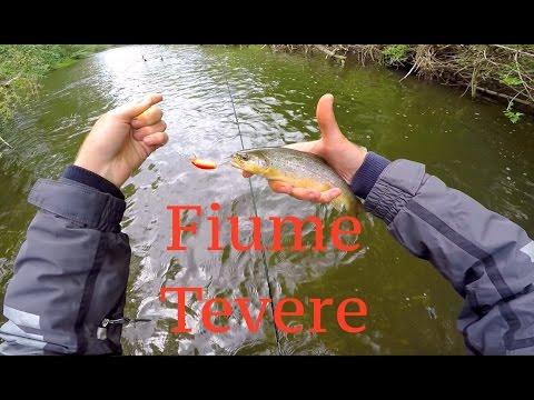 Pesca di ganci di mangiatore video