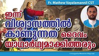 FR.MATHEW VAYALAMANNIL CST