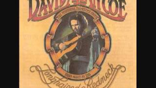 David Allan Coe - Living on the run