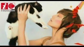 Popular Videos - Denise Ho & Memento