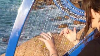 THE CRANBERRIES - Zombie - harp / harpe