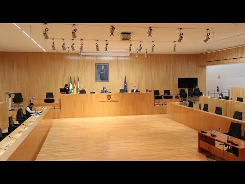 Pleno ordinario de la Diputación. Diciembre de 2020
