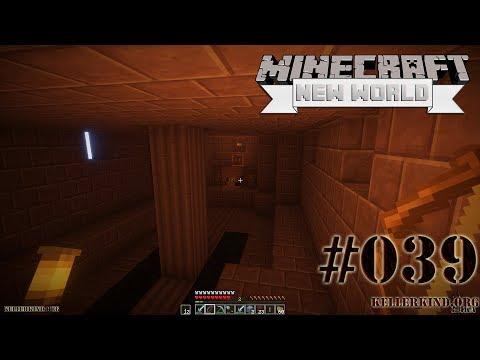Nur Fliegen ist schöner ★ #39 ★ We Play Minecraft SMP: A New World [HD|60FPS]