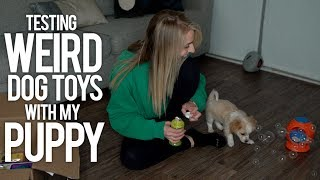 TESTING WEIRD DOG TOYS WITH MY PUPPY - Video Youtube