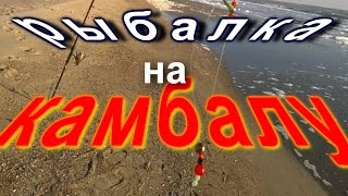 Как поймать камбалу в черном море