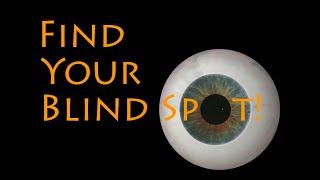 Find Your Blind Spot!