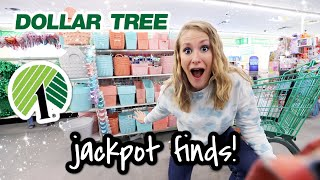 10 Dollar Tree Jackpot Secrets! 😱 HOW TO FIND THE BEST STORE & NEW ORGANIZATION IDEAS 2021!