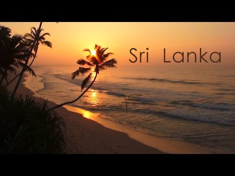 🌴 Sri Lanka 🌴 ✈ One of the best islands for HONEYMOON 💖 Kamila & Adrian
