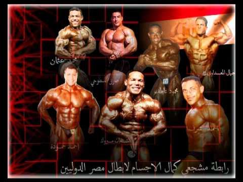 Les muscles les cuisses participant à la prévention
