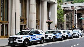 How to avoid an NYPD Character Disqualification