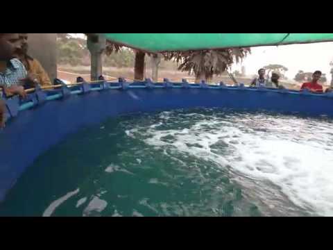 Fish Farming, Aquaculture in India