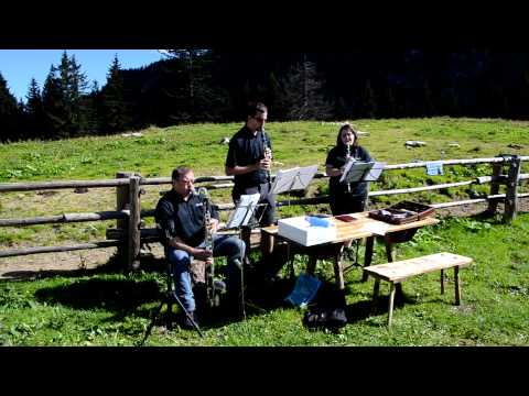 Video: Salzataler Hoizwiam (Musiker-Wandertag)