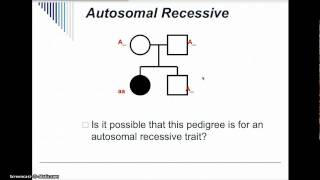 Pedigree Analysis Practice