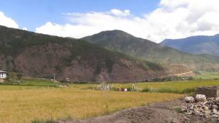 preview picture of video 'Bhutan - Punakha Valley, path leading to the Temple of the Divine Madman'