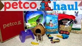 Petco Hamster Haul & New Tank!